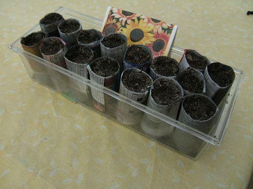 Petits pots a semis (2)