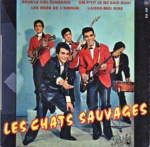 Medium_1963_chats_sauvages