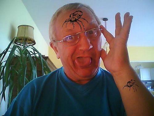 Tao  1 araignée