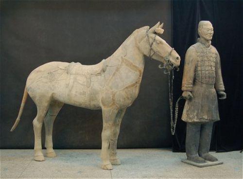 Cavalier et cheval sellé