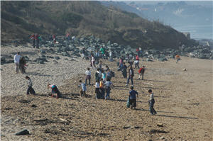 Nettyage des plages