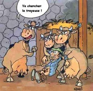 La vengeance des vaches